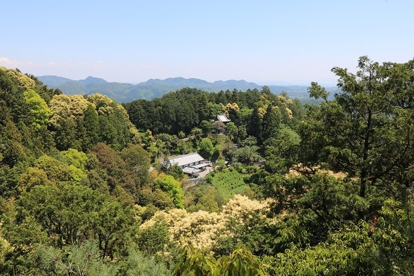 日龍峯寺全景