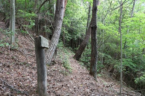 権現山登山道に設置された案内板