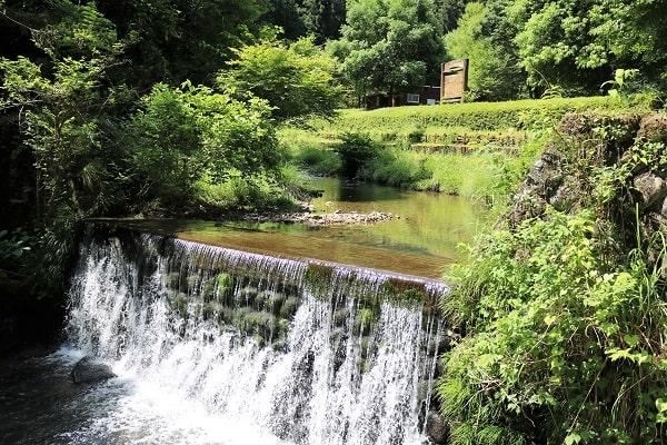 平成自然公園内を流れる小川